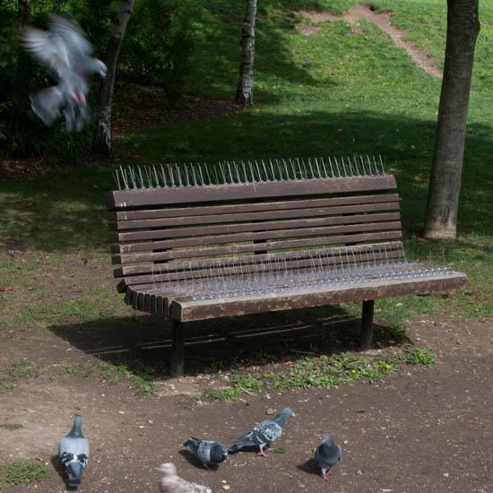 Banc anti-pigeon